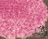 !B! Pink June Rug