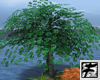 ~F~ Money grows on Trees