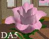 (A) Pink Rose Bud