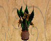Brown Potted Plant