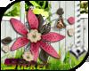 [ND]Flowers Bouquet™ •B•