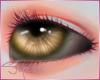 [SM]Eyes BrowneUnisex