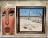 ~J ~CAPE COD BEACH SCENE