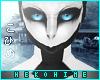 [HIME] X-17 Dragon Skin