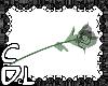 CdL Glass Rose [BLACK]