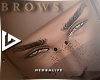 K9-brows