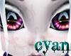 *c* JBG Midnight Eyes