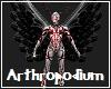 Arthropodium Avatar
