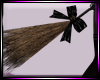 Dp Witches Broom