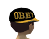 Crooked Obey Hat