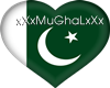 pakistani flag heart