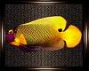 Unda The Sea Fish v2