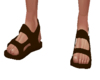 Brown monk sandals beach