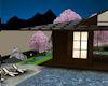 !Tea Garden at night
