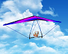 Couples Hang Glider