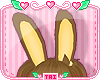 *T* Brown Bunny Ears