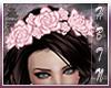 {HP} Rose Headdress V1