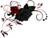 Red/Black Roses- TL