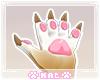 Fennec Paws