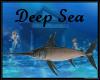 Deep Sea Sword Fish