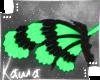 | Mashi | Wings 2
