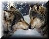 wolf bestie frame :)