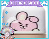 BT21 Foundation Cooky