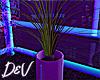 !D Plant
