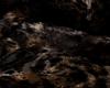 [SW] Fur Rug