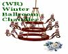 (WR) Winter BR Chandler