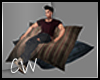 .CW.Industrial-Pillows P