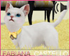 [FC] My Paris Kitten Pet