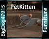 [BD]PetKitten