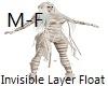 InvisibleLayerFloat M-F