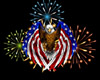 *R* USA Fireworks (F)