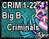 Big B: Criminals