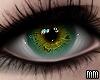 Eyes - Hazel