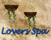 *S* Lovers Spa Plant