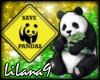 *LL* Panda enhancer