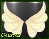Ǥ| Fairy Dance Seas6