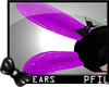 :P: Purple Ears |Req|