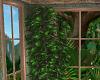 Garden Loft Plant