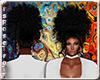 (RT)BLACK ALIYA HAIR