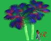 """""""RD"""" Pandora Palm Tree"""