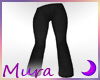 SS Jeans Flares Charcoal