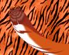 Fuego Tigre Tail