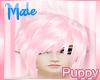 [Pup] Suzu Blush M