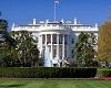 White House Filler