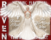 CHAMPAGNE WEDDING WINGS!