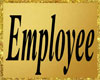 PD*(M) Employee Badge